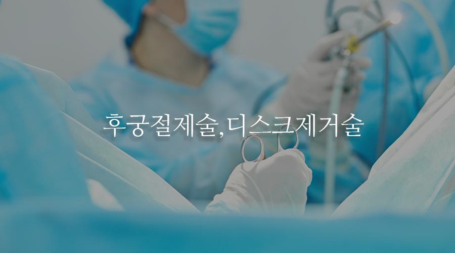 후궁절제술,디스크제거술